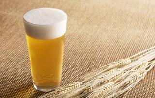 birra federbirra